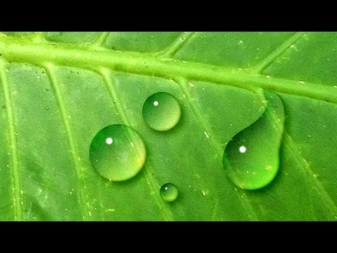 Photoshop: How to Make Water Drops