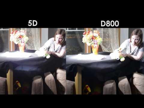 DSLR DUEL: Canon 5D vs. Nikon D800