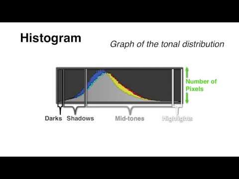 Your Camera's Histogram: Explained