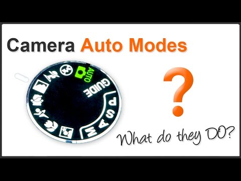 Photography Tips: What Do Auto Modes Do?