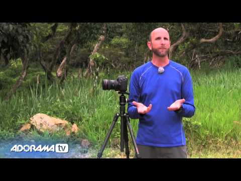 Auto Exposure Bracketing : Exploring Photography with Mark Wallace : Adorama Photography TV