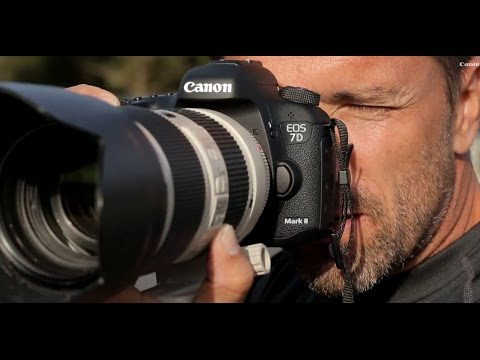 Exclusive: Canon EOS 7D Mark II DSLR – first test