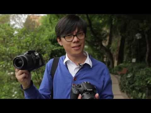 Canon 1200D (Rebel T5) vs Nikon D3300 – Which one should you get?