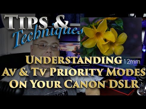 Understanding Aperture And Shutter Priority Modes On Your Canon DSLR | Tips & Techniques