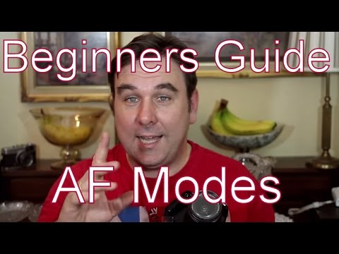 A Beginners Guide To Auto Focus (AF) Modes On Your Canon dSLR: One Shot, AI Focus & AI Servo