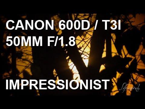 Canon 600D Short Film | Impressionist / Impressionism | Bokeh | Rebel T3i | 24 fps