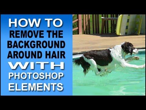 Remove Background Around Hair In Photoshop Elements 11, 12, & 13