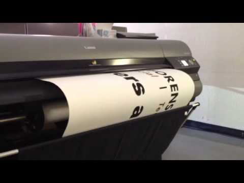 Large Format Printing of Banners, Posters, POS Displays and Vehicle Wraps