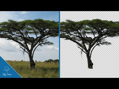 Tricky Cut Outs made EASY and FAST: PHOTOSHOP #76