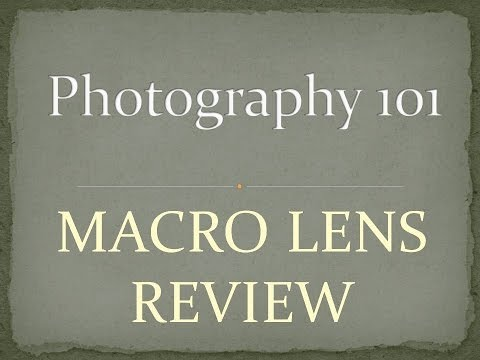 Macro Lens Review For Canon DSLR – Photography 101 Wide Angle