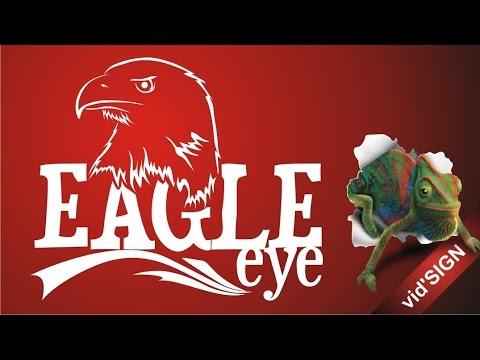 How to Design Logo Animals Symbol (Eagle Version 1)