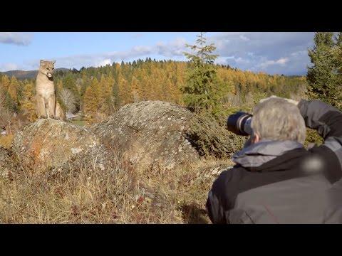 Canon EOS 7D Mark II Field Test: Capturing nature with Adam Jones